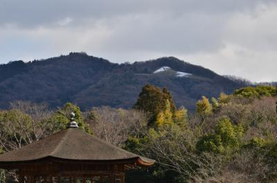 高円山の雪