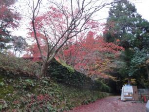 12.12.02 京都旅行 001