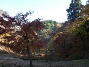 12.12.03 京都旅行 003