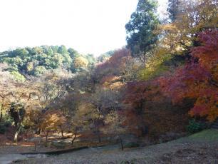 12.12.03 京都旅行 004