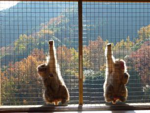 12.12.03 京都旅行 010