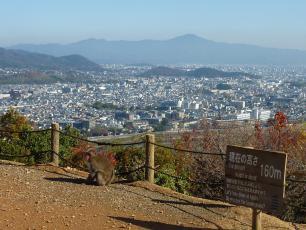 12.12.03 京都旅行 007