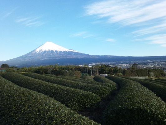 2013初春富士山横