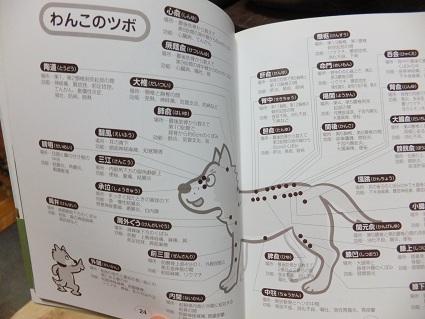 2013.2.19つぼほん