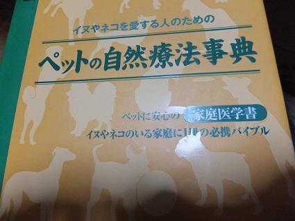 2013.2.9じてん