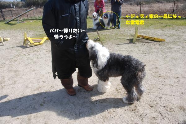 DSC_0086_convert_20130205173302.jpg