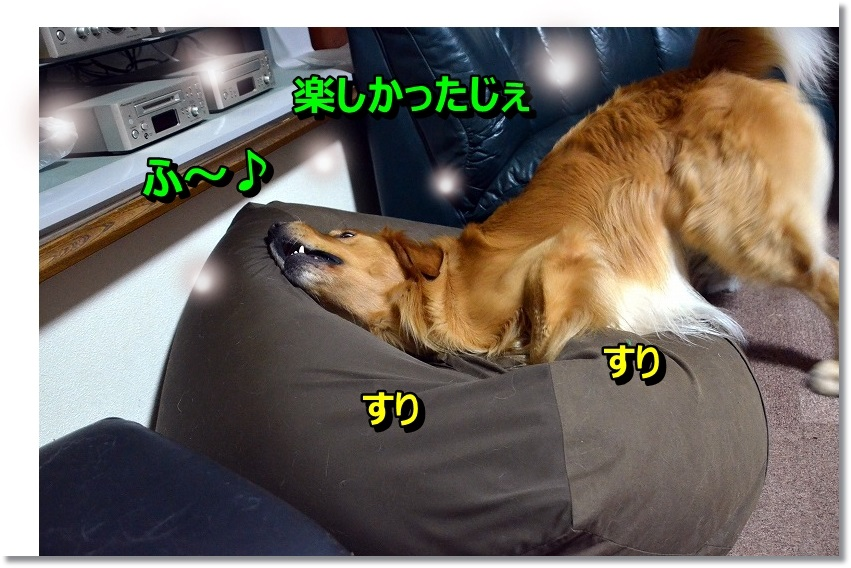 DSC_6687_201412140937016d0.jpg