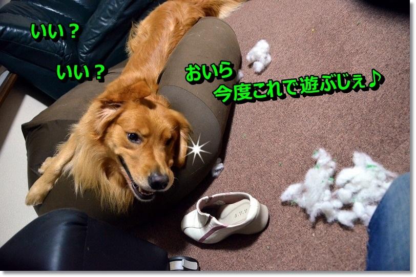 DSC_6695_20141214093705c37.jpg