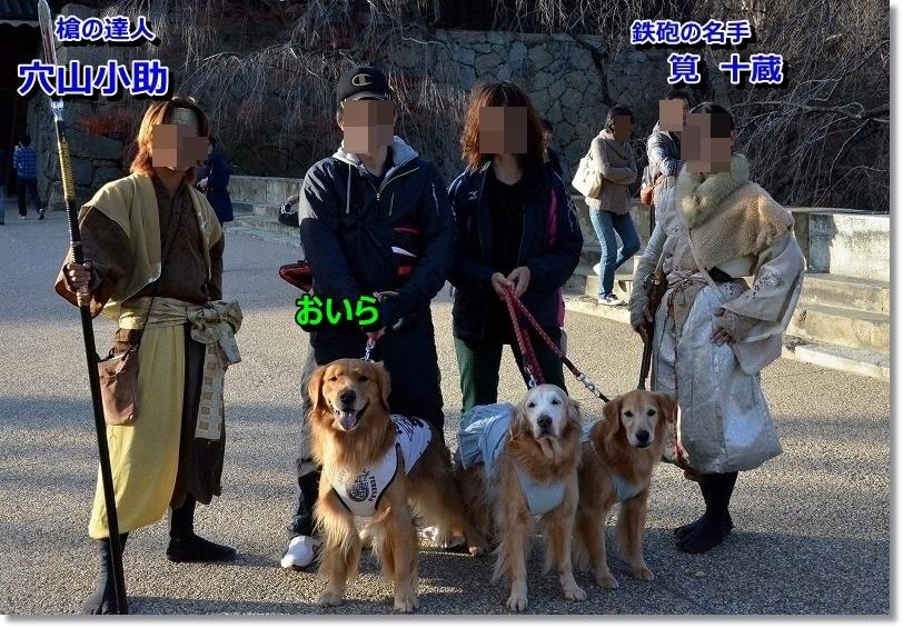 DSC_7258_201412012109178fb.jpg