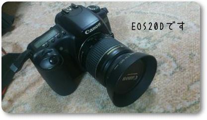 DSC_0016_convert_20120624190848.jpg
