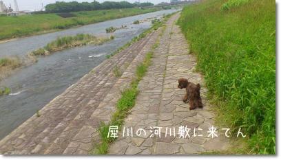 DSC_0026_convert_20120517151136.jpg