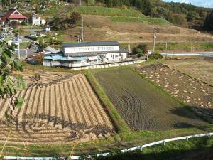 新浪神社20121103d05