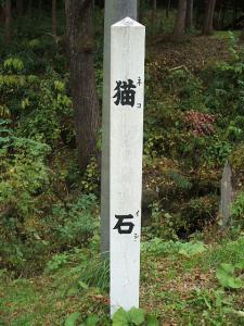 猫石2012110301