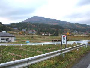 20121111016.jpg