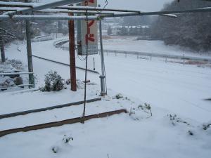 この辺では大雪です04