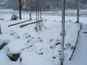 この辺では大雪です01