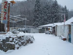 この辺では大雪です07