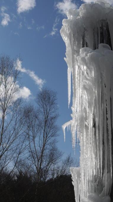 樹氷祭り03