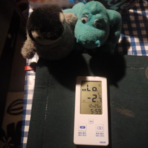 SG朝の気温