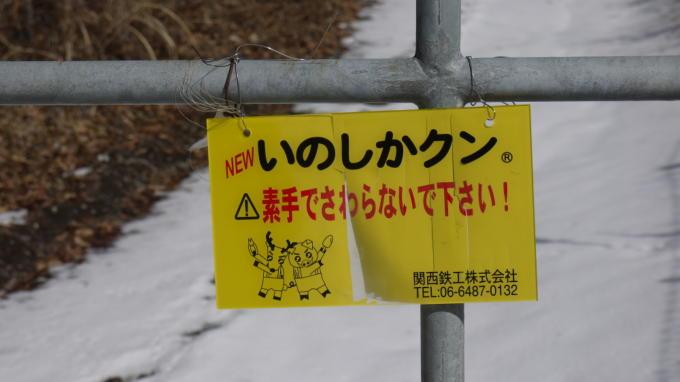 あさまの森-牧場への道04