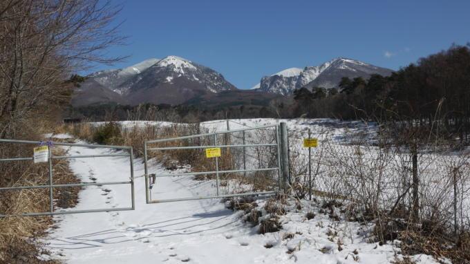 あさまの森-牧場への道02