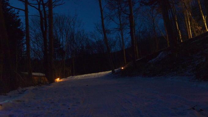 あさまの森-20130208夜07
