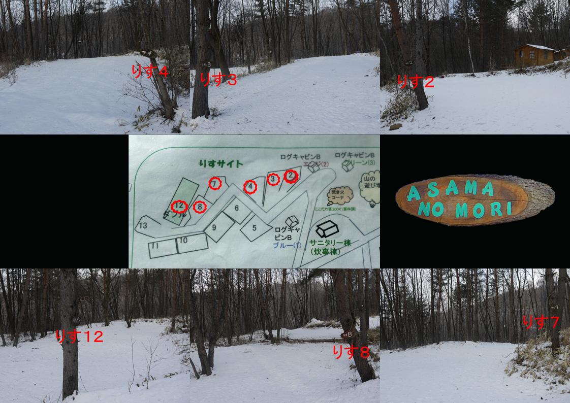 あさまの森-サイト01