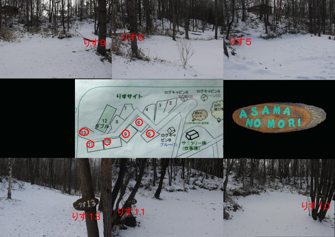あさまの森-サイト02