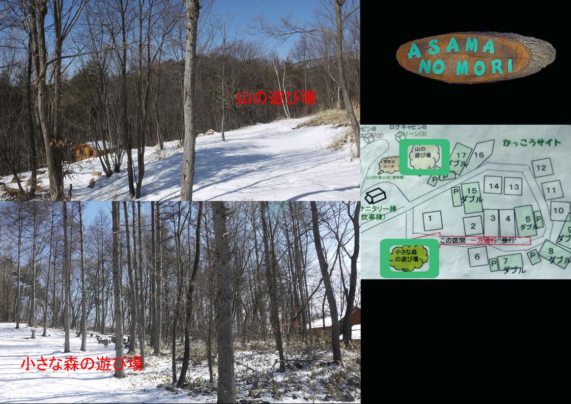 あさまの森-サイト05