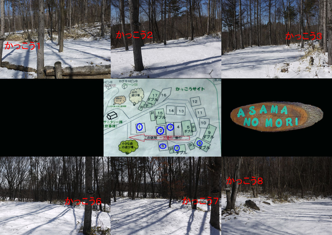 あさまの森-サイト06
