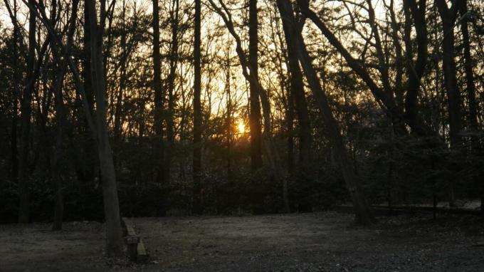 太陽の丘-0316-09