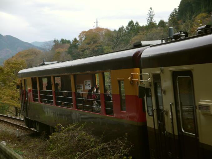トロッコ列車03