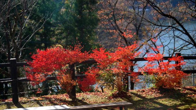 草木湖03