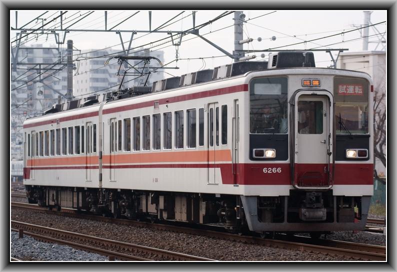 DSC00971 - コピー