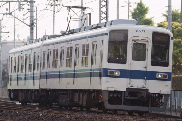 DSC05432.jpg