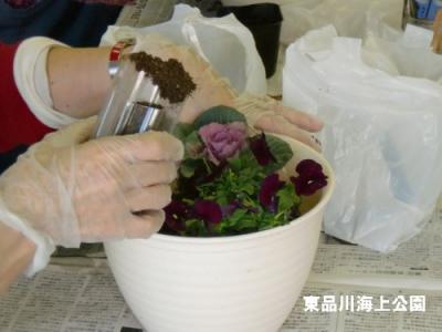 fuyu3_20121216160420.jpg