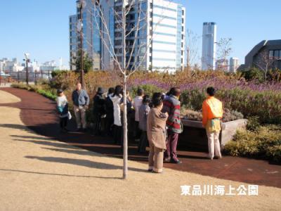 fuyu4_20121216161144.jpg