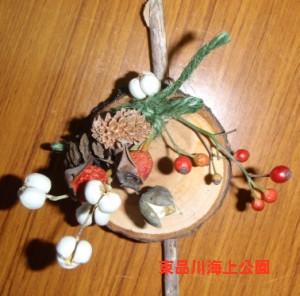fuyu7_20121216160520.jpg