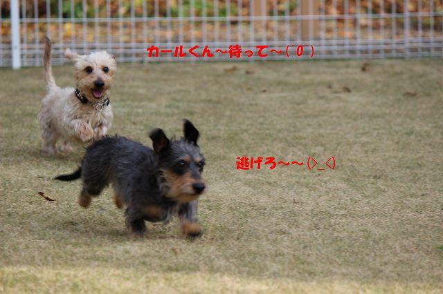 IMG_7626.jpg