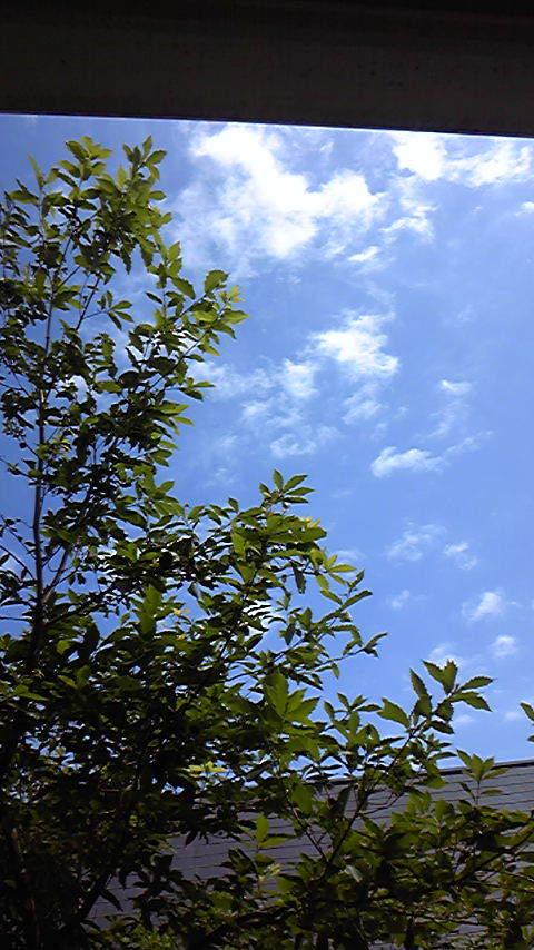 占い師響春のつぶやき-100720_150552.jpg