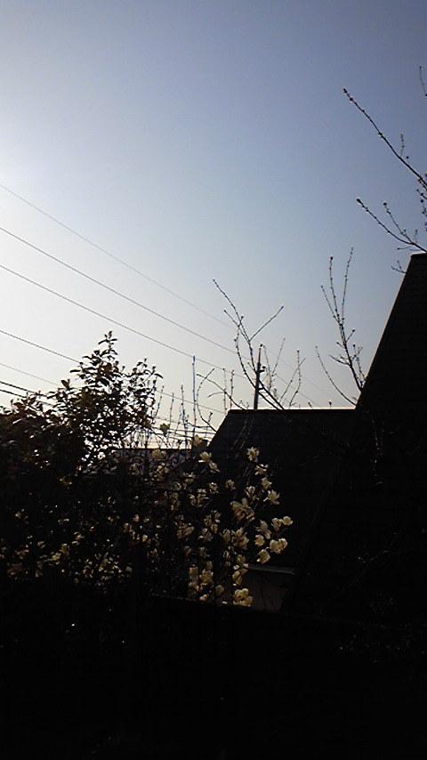 占い師響春のつぶやき-110401_075256.jpg
