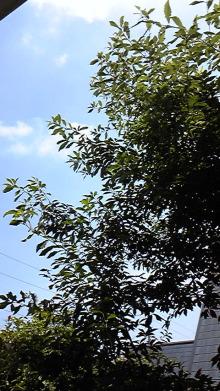 山口下関の占い師響春(きょうしゅん)の開運話-120723_134239.jpg