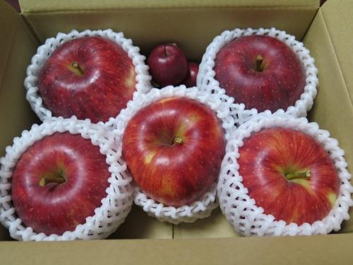 久万高原のりんごさん