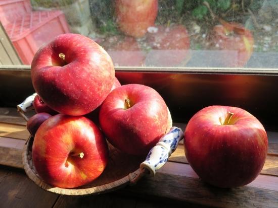 正岡りんごさんのりんごさん