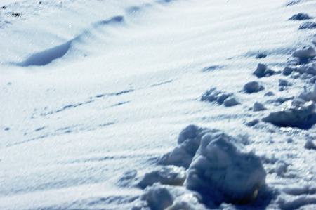 雪i02583