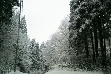 雪1000060