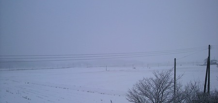 雪1000075