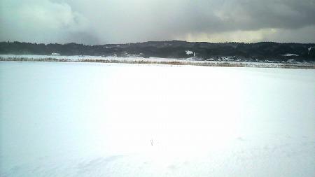雪1000077