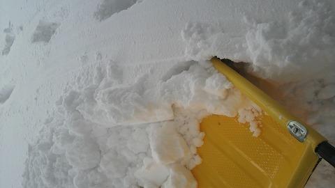 雪1000156