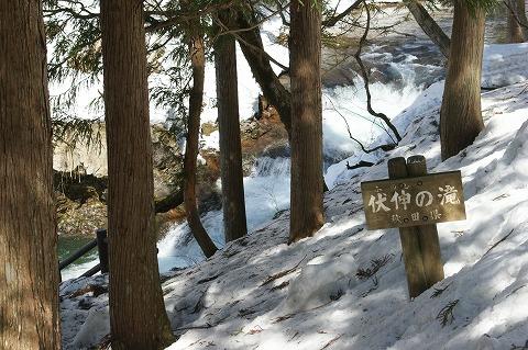 伏伸の滝02681